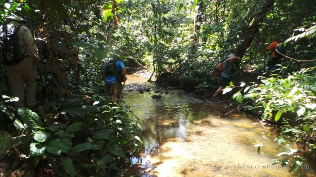 Borneo Mountain Trekking